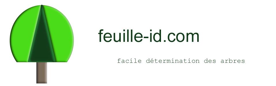 feuille-id.com